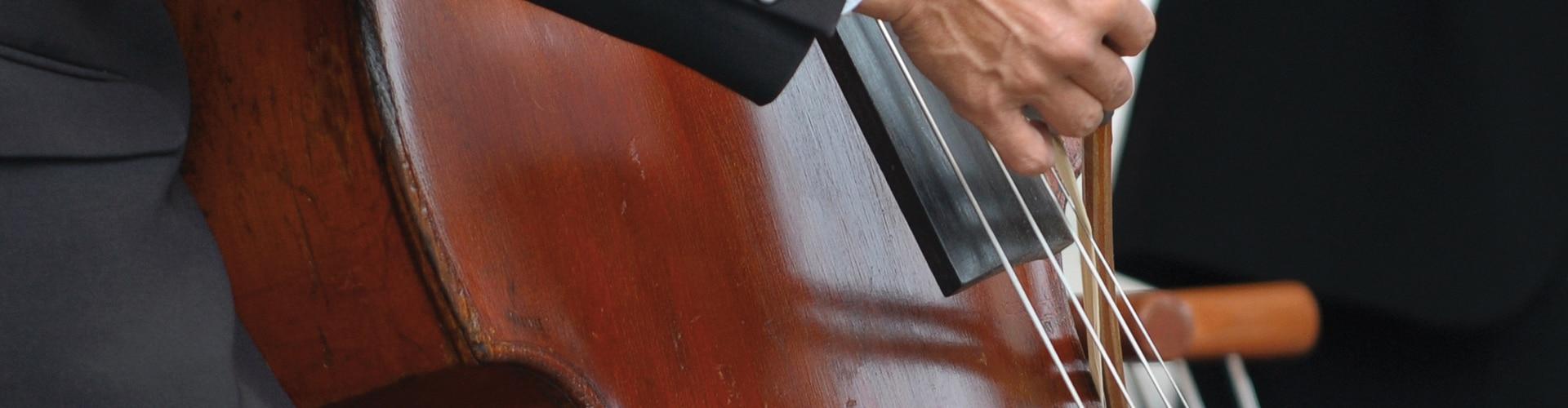 Sicherer Transport der Instrumente mit Luxreisen
